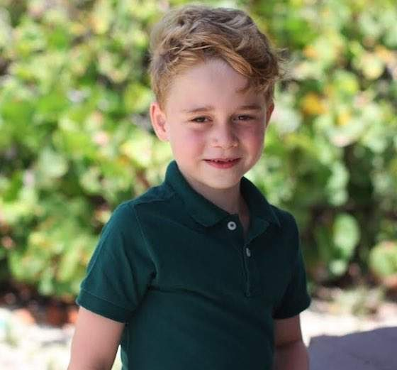 Kensington Palace Has Shared Prince George's Official 6th Birthday Pictures